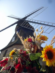 Die Jungfernmühle